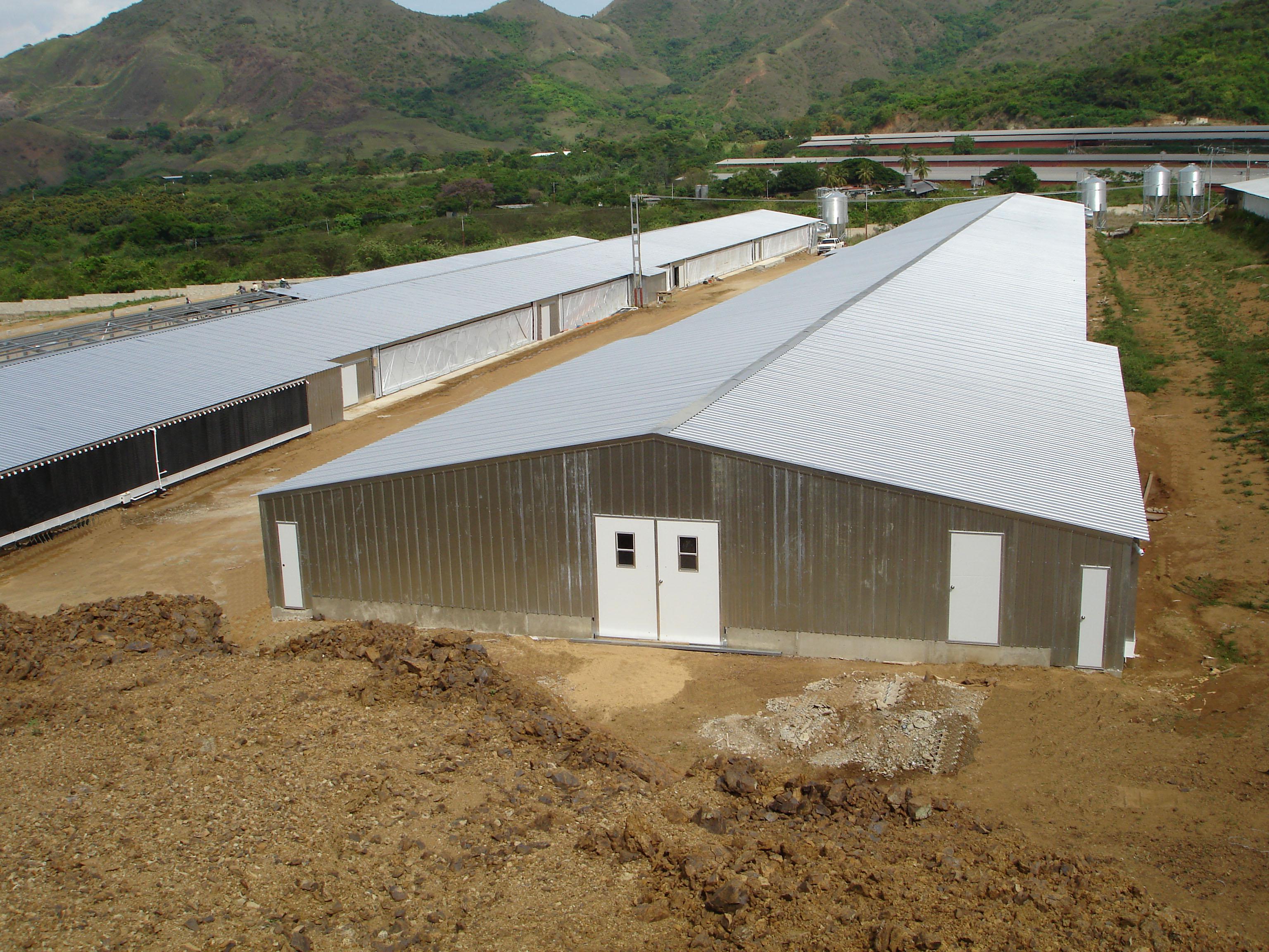 Poultry Farm Construction : Poultry buildings sentinel